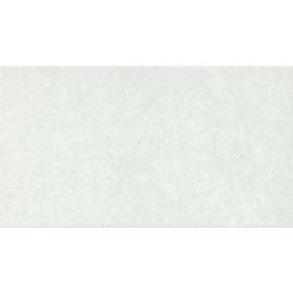 ASTRA Grigio 25x45