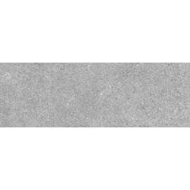CARION GRIS 30x60