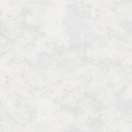 CARRELAGE RIGA BLANC 60X60