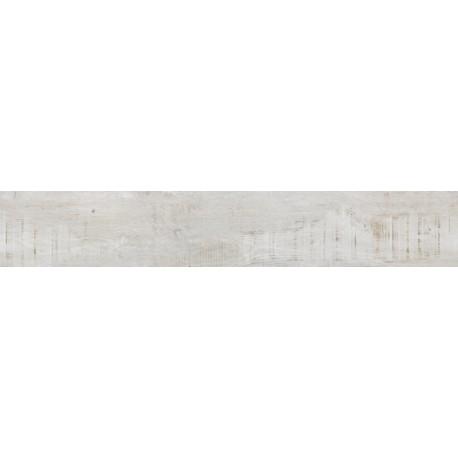 BICHA GRIS CLAIR 15x90