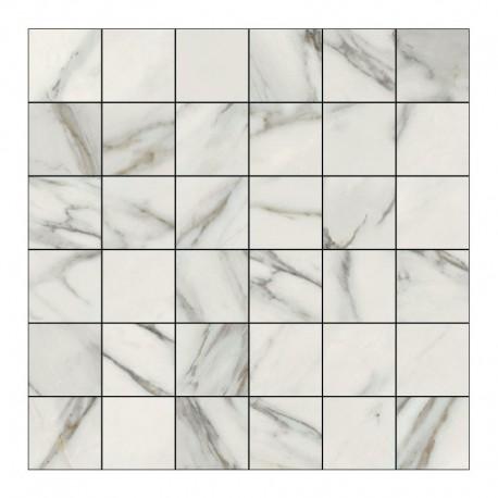Carrelage Mosaique Effet Marbre Blanc 30x30 Vision Douche